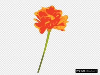My Flower2
