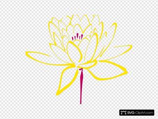 Pink Yellow  Lotus Clipart