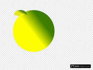 Yellow Green Tran