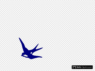 Colored Swallow