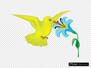 Yellow Hummingbird With Flower