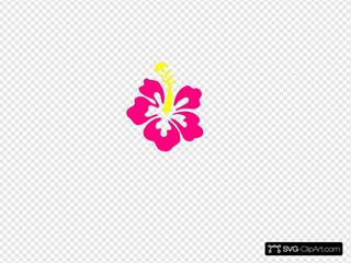 Happy Pink Hibiscus
